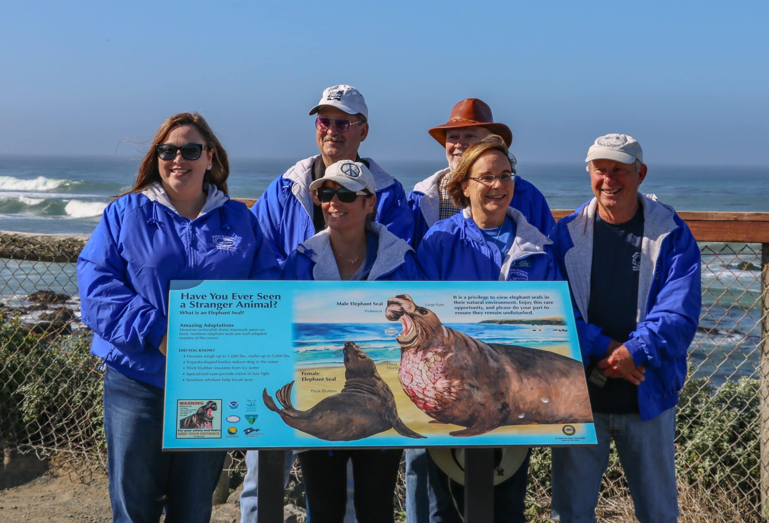 Friends of the Elephant Seal Docents